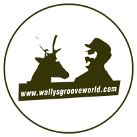 Wally's Groove World