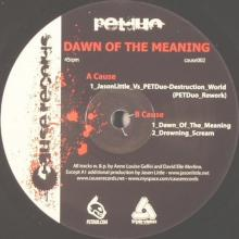 Dawn Of The Meaning